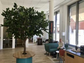 Swedbank Norra Djurgårdsstaden