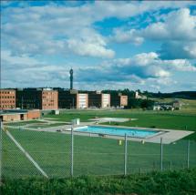 Foto: Ingemar Gram (augusti år 1967)