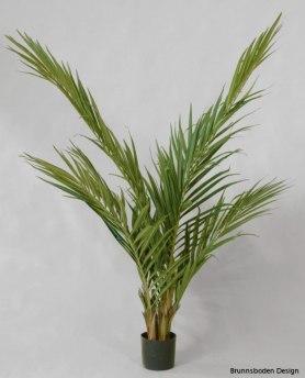 Majesty Palm 150cm - Majesty Palm 150cm