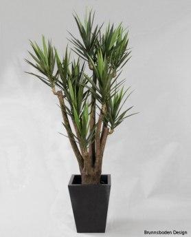 Yucca 216cm - 1069-216 Yucca