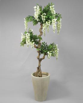 Vistera Orchide 170cm - 52-170 vistera 170cm