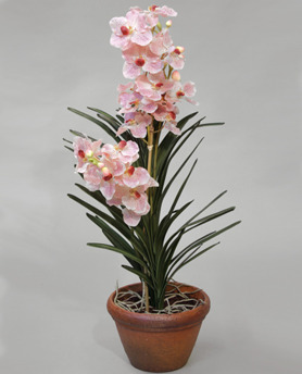 Orchid Wanda Pot 87cm - 9390 Orchid Wanda Pot 87cm