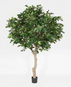 Oak Tree 350 cm