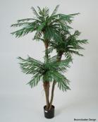 Palm 3st stammar 190cm