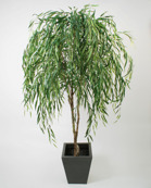 Willow 200 cm
