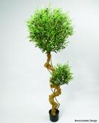 Olive Tree 180cm