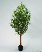 Olive Tree 140cm