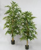 Longifolia 170 cm Rak