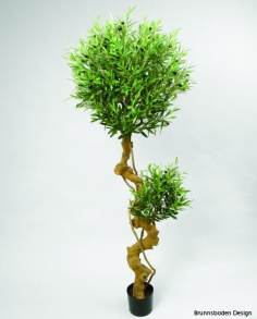 Olive Tree 180cm - Olive Tree 180cm