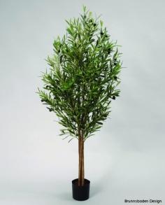 Olive Tree 110cm - Olive Tree 110cm