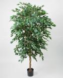 Ficus3,3-konstgjorda-vaxter-trad-brunnsboden