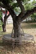 Trädbänk rund i smide. Åter i lager 2020-08-07