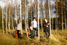 sexton strängar skog