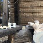 Kaffepaus bakom skoter garaget