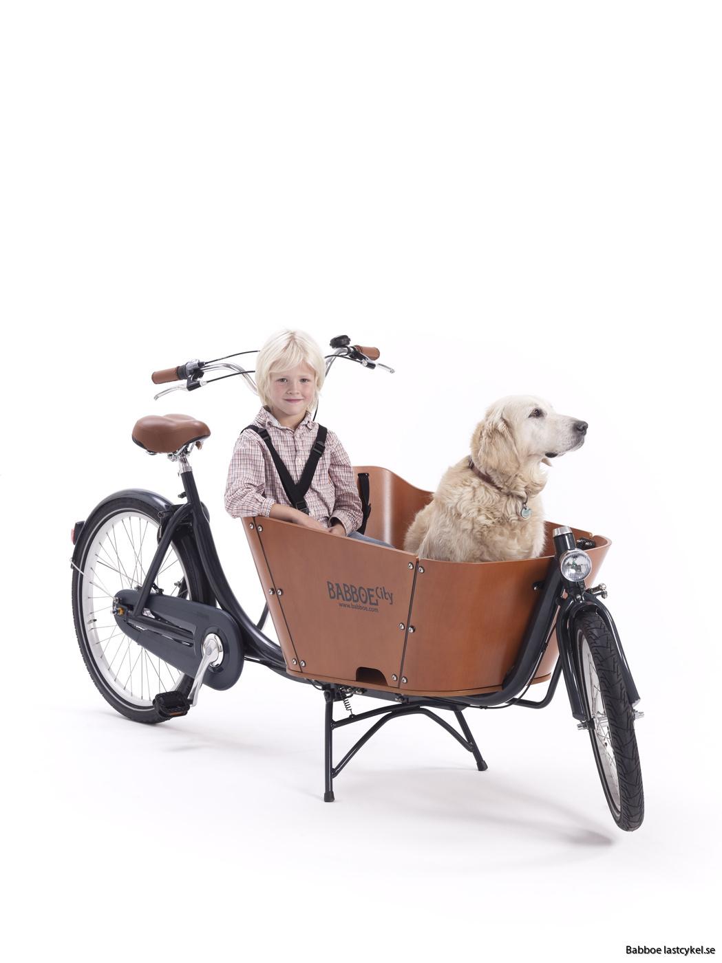 Babboe City med hund