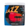 Thomastik Jazz JF344 Flatwound 043-100 Long Scale