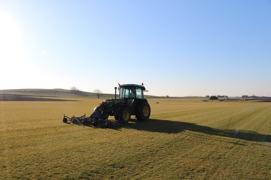 Färdig gräsmatta på rulle från Österlengräs