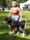Orvar BIR P1570687