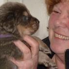 Daalia puppy  P1630500