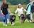 2016 08 21 Eskiltuna, BOB puppy Kion BOS puppy Sandra P1660495