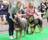 Hund 2016 Sandra svensk juniporvinnare 16