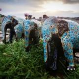 Prydnad Elefant färgglad 3st