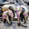 Prydnad Elefant färgglad 3st - Lila och guld 3-pack
