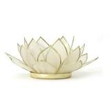 Lotusblomma ljuslykta - Vit med guldkant