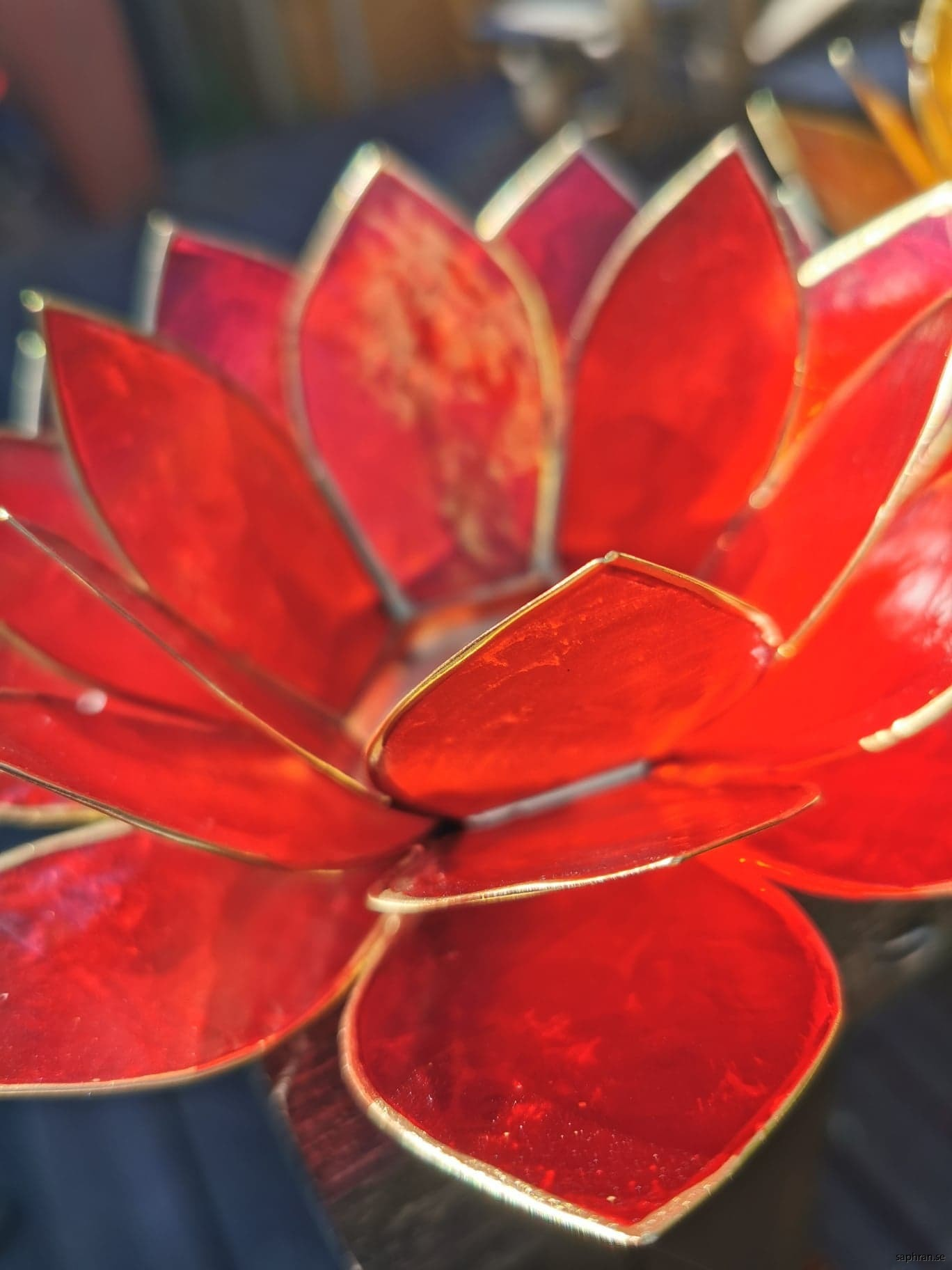 Lotuslykta chakra röd