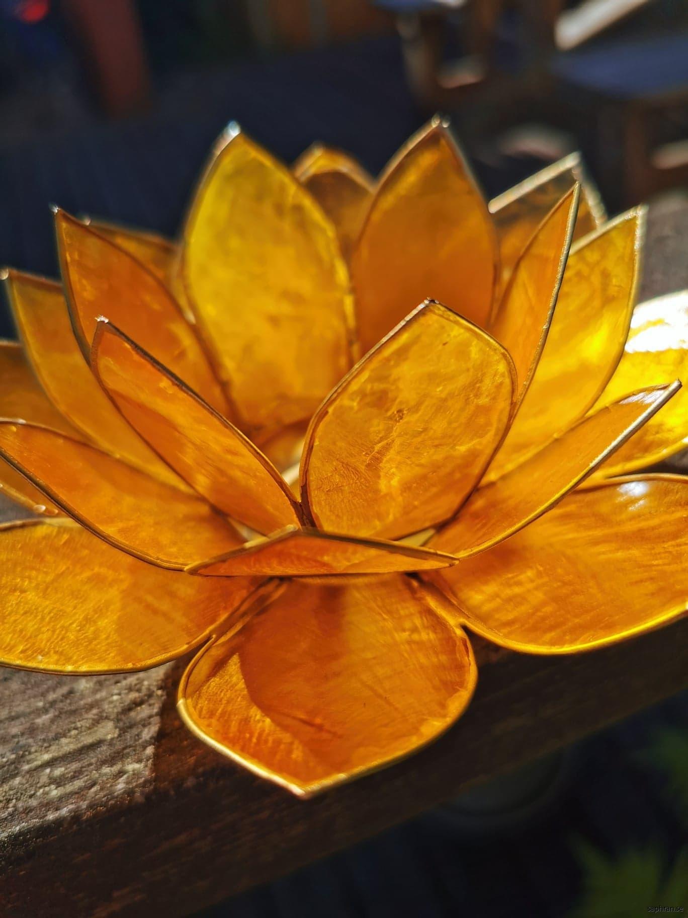 Lotuslykta chakra gul