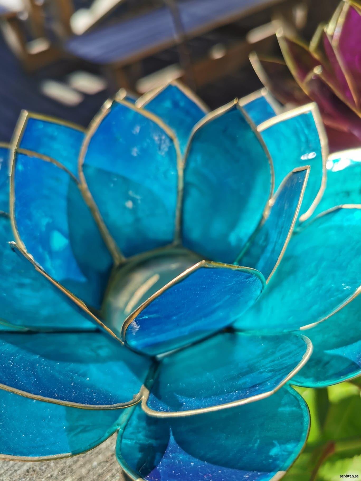 Lotuslykta chakra indigo