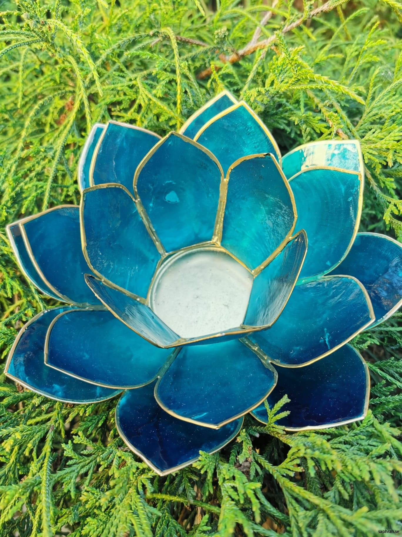 Stor Lotuslykta indigo