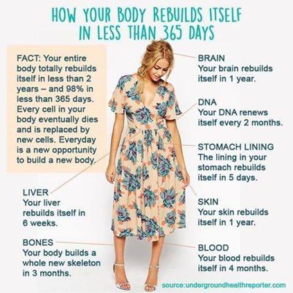 Förebygg Förbättra Förändra Hälsa Kost Näring Kandre