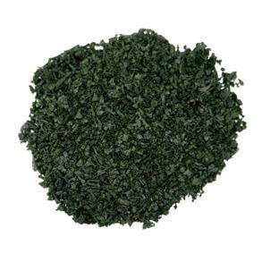 Salvia - Salvia