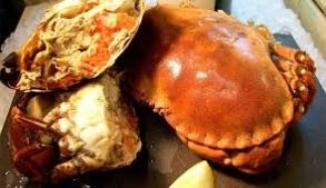 North sea crab alive - North sea crab approx 600 gr+ kg