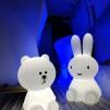 Hyr Joey & Joe - Uppladdningsbara LED