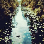 Secret River - Posterperfect featuring Jenny Björnå