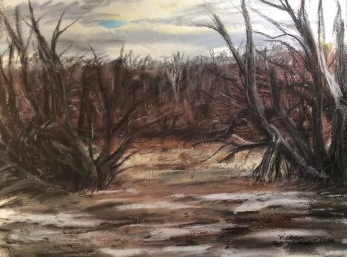 From WInter to Spring. Soft pastel. 30x 40 cm.  SOLD