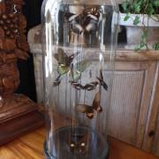 Glob med fjärilar