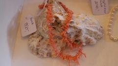Korallhalsband