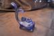 Blå glasfisk