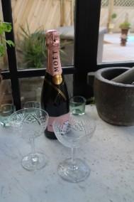 Champagneskålar