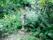 Sinnenas trädgård - mindfulness, hälsa & retreat