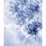 Frostiga sippor