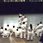 Sensei i Kase-Ha läger i Bremmen 1999