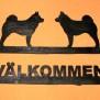 Välkommen Hund o katt För fler alternativ Klicka på bilden - lapphund
