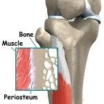 artrosakupunktur