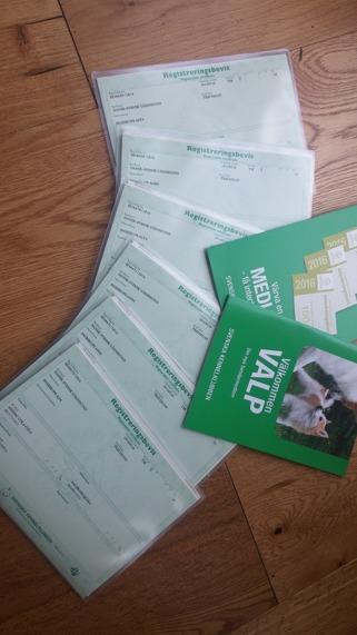 Nu har alla registreringsbevis kommit 7 juli 16