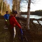 Cyklister och bäverfälld björk Solanderleden
