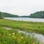 Våtmarker Infjärden Solanderleden